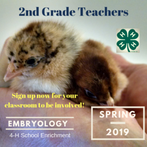 Cover photo for Embryology Workshop Available for Local Educators