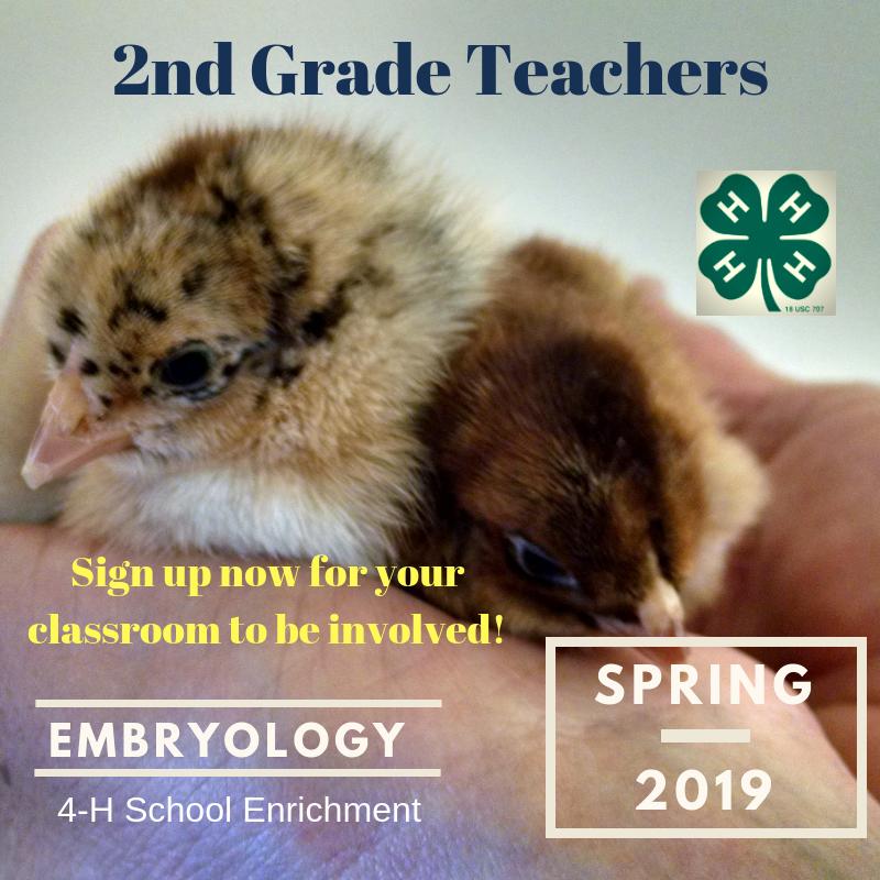 Embryology flyer image