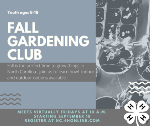 Fall Gardening Club Cabarrus County 4-H Club