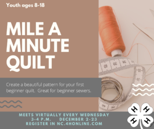 Cover photo for Mile a Minute Quilt 4-H Class