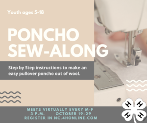 Cover photo for Poncho Sew-Along 4-H Class